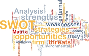 Artist SWOT Analysis by Lake Oswego Consulting Group